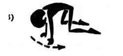 Лечебная физкультура для спины