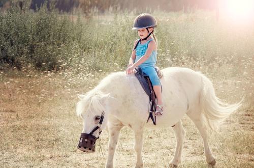 Иппотерапия или лечение лошадьми