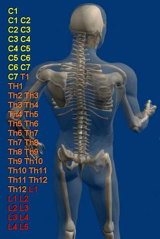 Консервативное (нехирургическое) лечение стеноза спинномозгового канала.